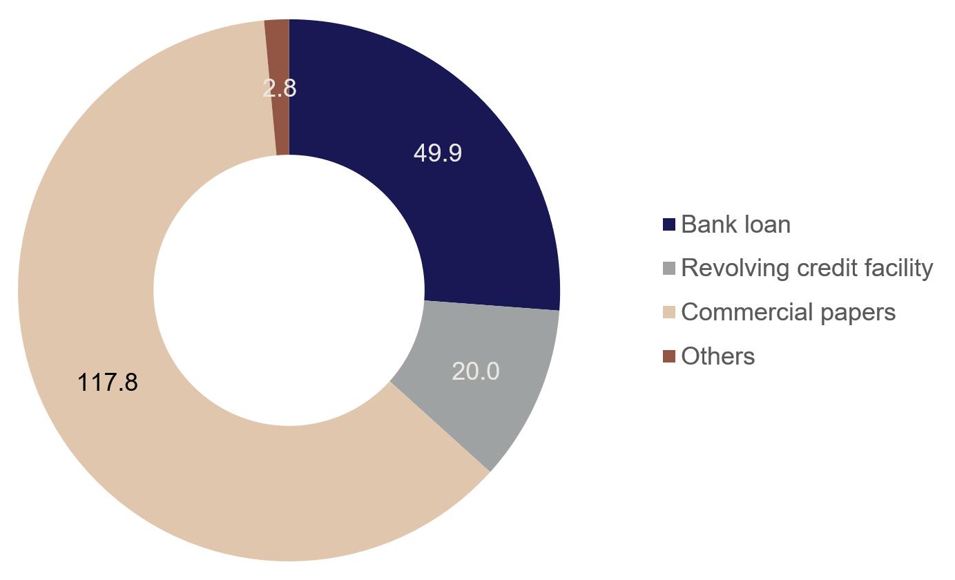 Debt Financing Tikkurila